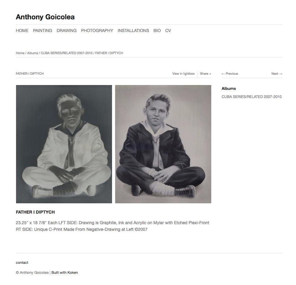 A photo of Anthony Goicolea.